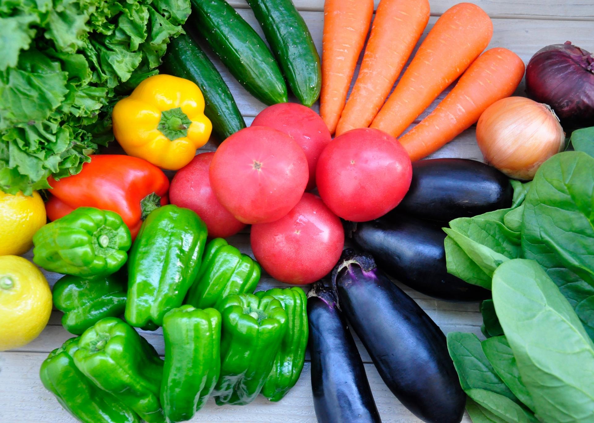 家庭菜園のトマトの皮が固い理由と、解決策を一気に紹介