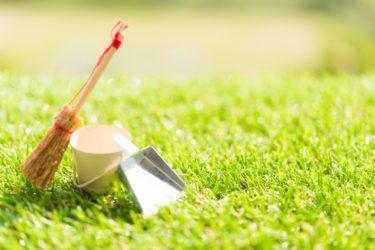 庭の掃除を業者に頼むメリットと上手な業者選びのポイント